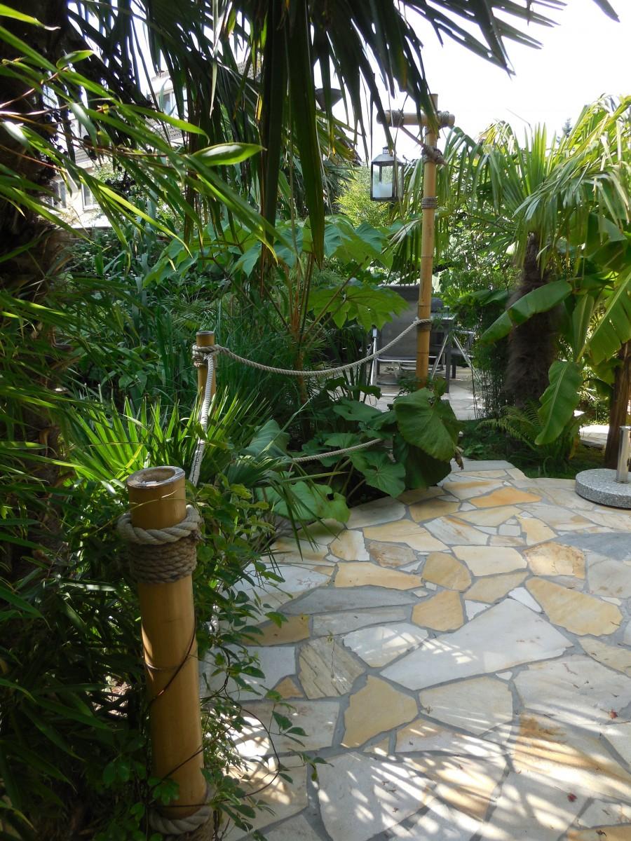 Iwan 39 s jungle tuin foto album en video - Terras en tuin ontwikkeling foto ...