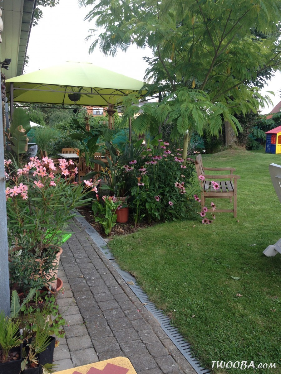 """Jardin """"La Palmeraie"""" à Renaix (B) IMG_5661"""
