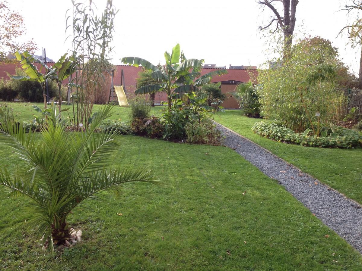 "Jardin ""La Palmeraie"" à Renaix (B) - Page 5 IMG_8109"